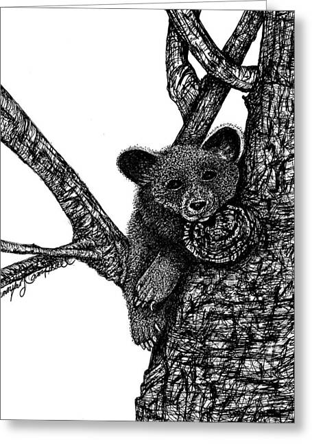 Wild Life Drawings Greeting Cards - Baby Bear Greeting Card by Jennifer Campbell Brewer