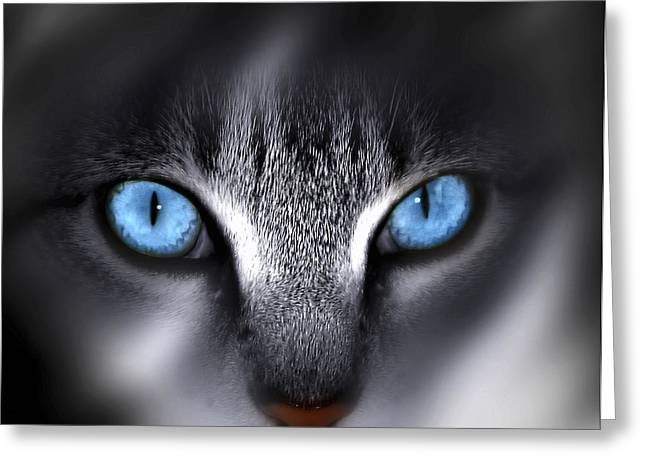 Cat Face Greeting Cards - Baby Blues Greeting Card by Cecil Fuselier