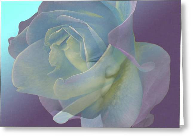 Floral Digital Art Digital Art Greeting Cards - Baby Boy Greeting Card by Torie Tiffany