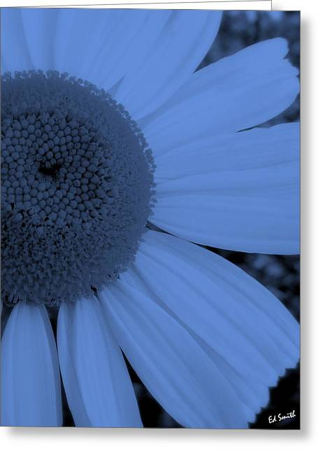 Indiana Flowers Greeting Cards - Baby Boyz Greeting Card by Ed Smith