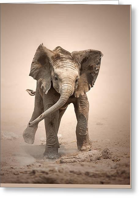 Baby Elephant Mock Charging Greeting Card by Johan Swanepoel