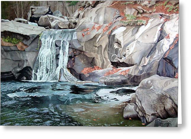 Tennessee River Paintings Greeting Cards - Baby Falls Greeting Card by Jennifer Oakley-Delaplante