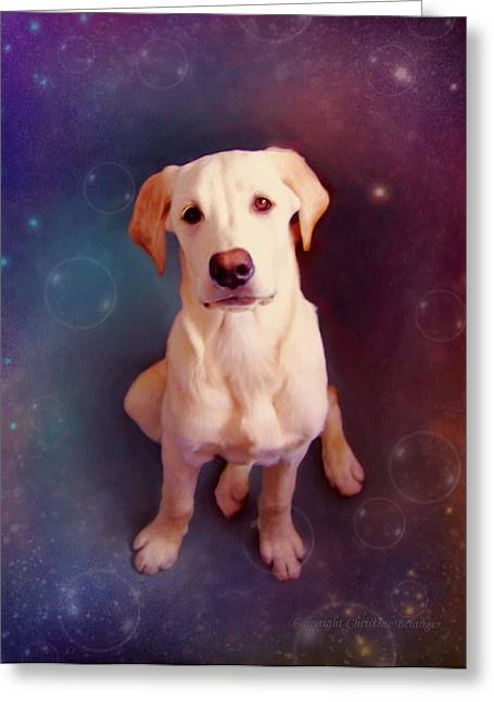Puppy Digital Art Greeting Cards - Baby Max Greeting Card by Christine Belanger