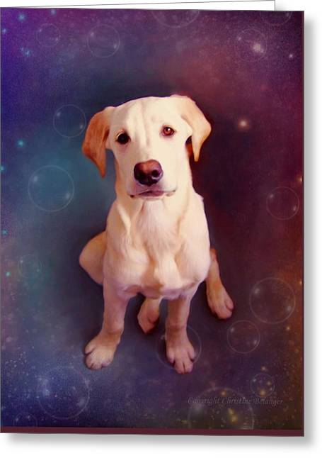 Puppies Digital Art Greeting Cards - Baby Max Greeting Card by Christine Belanger