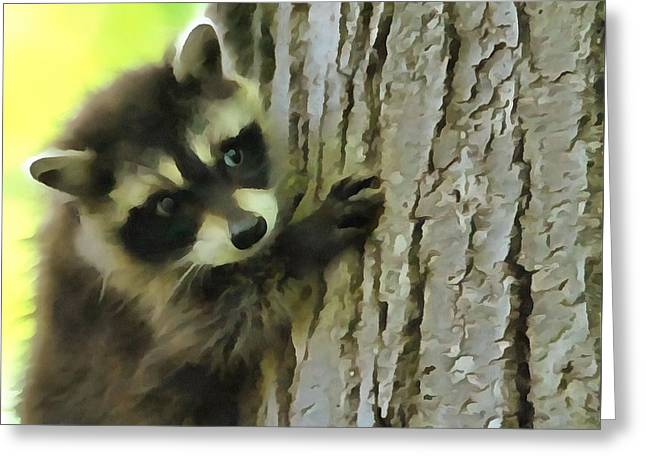 Cute Mixed Media Greeting Cards - Baby Raccoon In A Tree Greeting Card by Dan Sproul