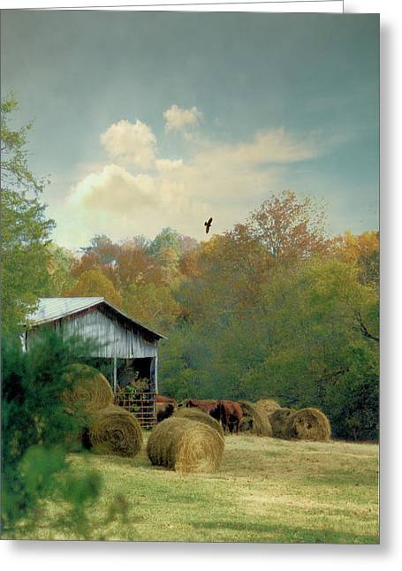 Tennessee Hay Bales Greeting Cards - Back At The Barn Again Greeting Card by Jan Amiss Photography
