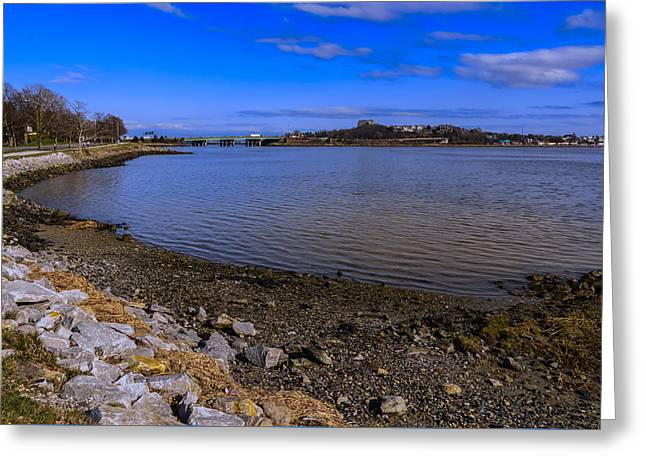 Maine Beach Greeting Cards - Back Cove Afternoon Greeting Card by Mark Myhaver