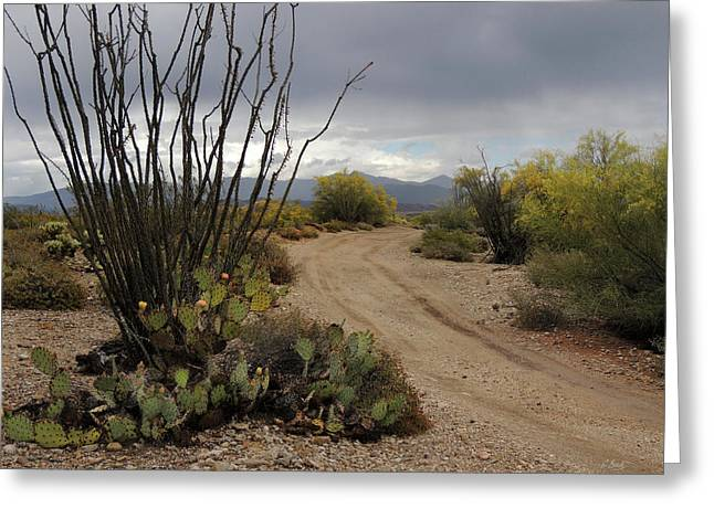 Back Road, Arizona Greeting Card by Gordon Beck