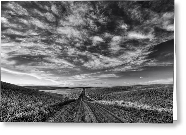 Back Road Solitude Black And White Greeting Card by Mark Kiver