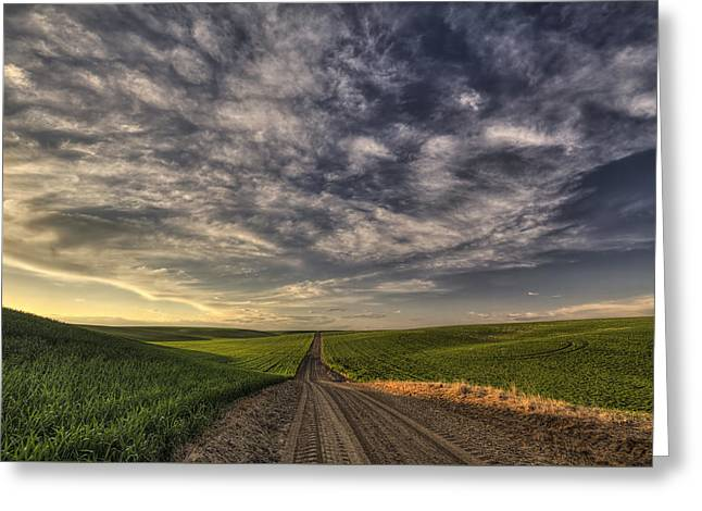 Back Road Solitude Greeting Card by Mark Kiver
