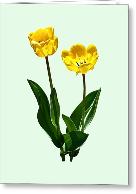 Tulips Greeting Cards - Backlit Yellow Tulips Greeting Card by Susan Savad