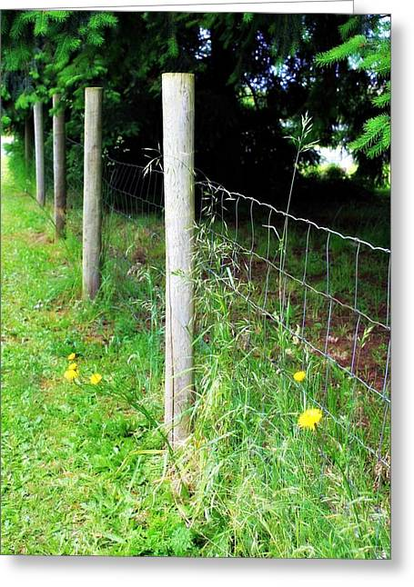 Decor Photography Greeting Cards - Backyard Fence Greeting Card by Cathie Tyler