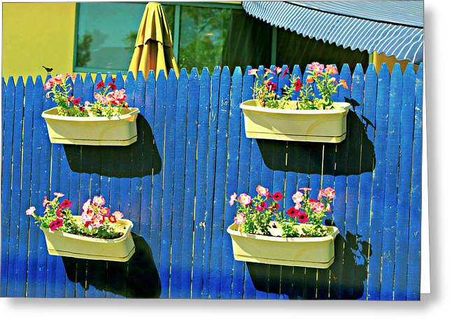 Backyard Fence Greeting Card by Diana Angstadt