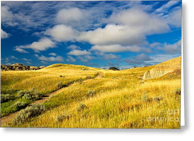 Dinosaur Provincial Park Greeting Cards - Badlands Of The  Alberta Prairie, Canada Greeting Card by James Steinberg