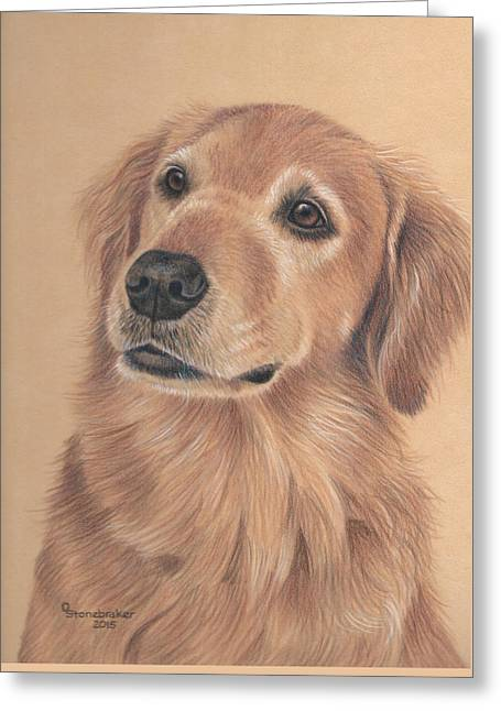 Soft Drawings Greeting Cards - Bailey Greeting Card by Debbie Stonebraker