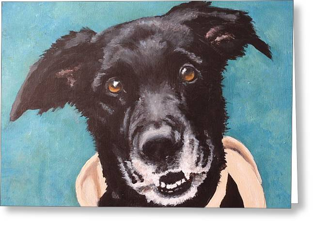 Dog Close-up Paintings Greeting Cards - Bailey Dog of Honor Greeting Card by Carol Russell