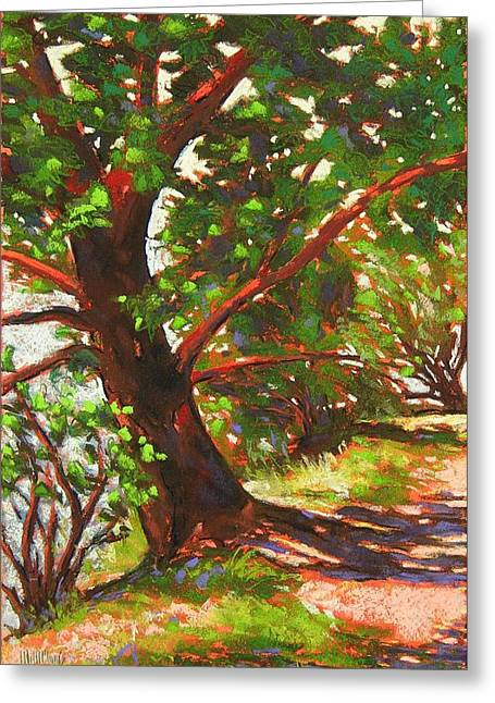 Pacific Northwest Pastels Greeting Cards - Bainbridge Madrona 3 Greeting Card by Mary McInnis