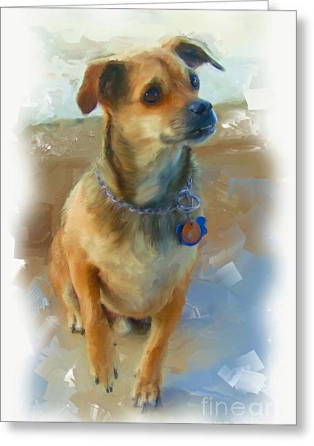 Dogs Digital Art Greeting Cards - Baja The Dog Greeting Card by Robin  Waters