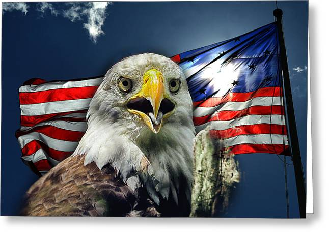 Star Greeting Cards - Bald Eagle and American Flag Patriotism Greeting Card by Bill Swartwout