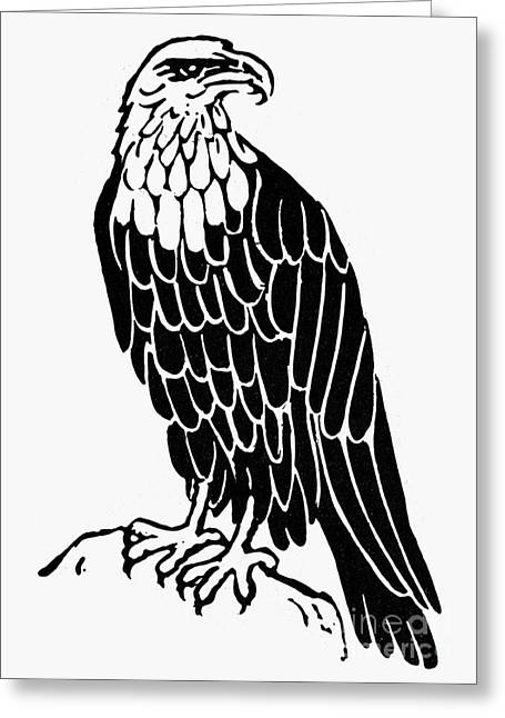 Eagle Drawing Greeting Cards - Bald Eagle Greeting Card by Granger
