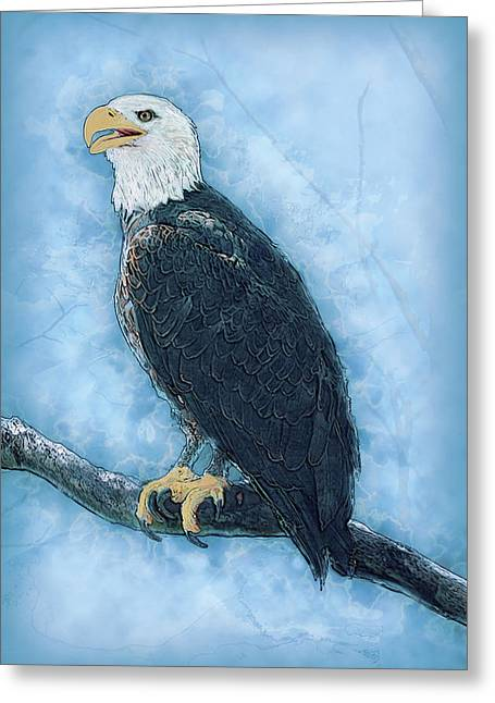 Bald Eagle Greeting Card by Jack Zulli