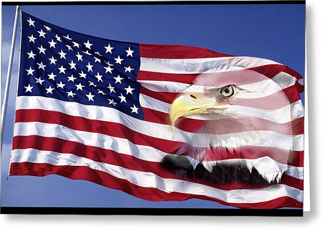 Flag Of Usa Greeting Cards - Bald Eagle On Flag Greeting Card by Panoramic Images
