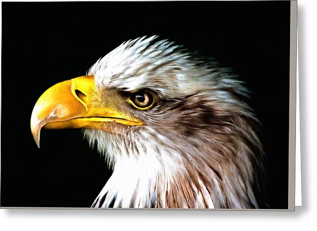 Portrait Greeting Cards - Bald Eagle Portrait Greeting Card by Georgiana Romanovna