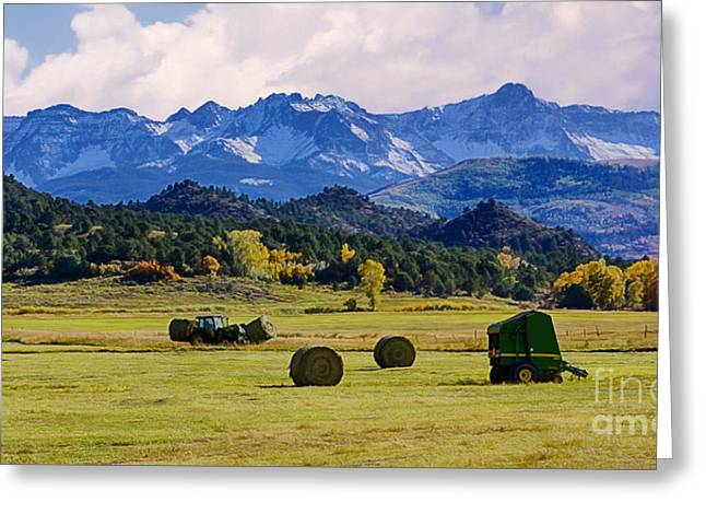 Snow Scene Landscape Greeting Cards - Baling Hay Greeting Card by Priscilla Burgers