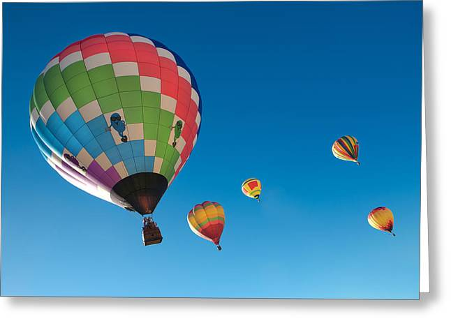 Coloured Greeting Cards - Balloons on Blue Greeting Card by David Hare