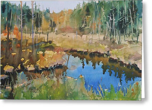 Bally Road Bog Greeting Card by Spencer Meagher