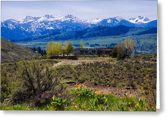 Balsamroot Flowers And North Cascade Mountains Greeting Card by Omaste Witkowski