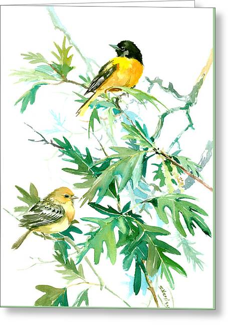 Baltimore Orioles And Oak Tree Greeting Card by Suren Nersisyan