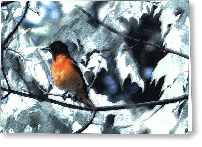 Digital Paint Greeting Cards - Baltimore Orioles Dream Greeting Card by Nancy TeWinkel Lauren