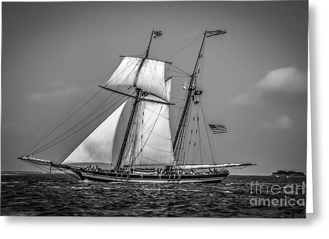 Sailing Ship Greeting Cards - Baltimore Pride Greeting Card by Dale Powell