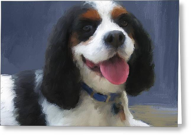 Spaniel Greeting Cards - Balue Greeting Card by Diane Chandler