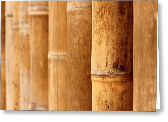 Fitting Room Greeting Cards - Bamboo 4 Greeting Card by Heike Hultsch