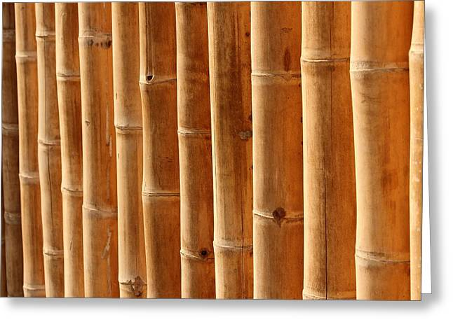 Fitting Room Greeting Cards - Bamboo 5 Greeting Card by Heike Hultsch