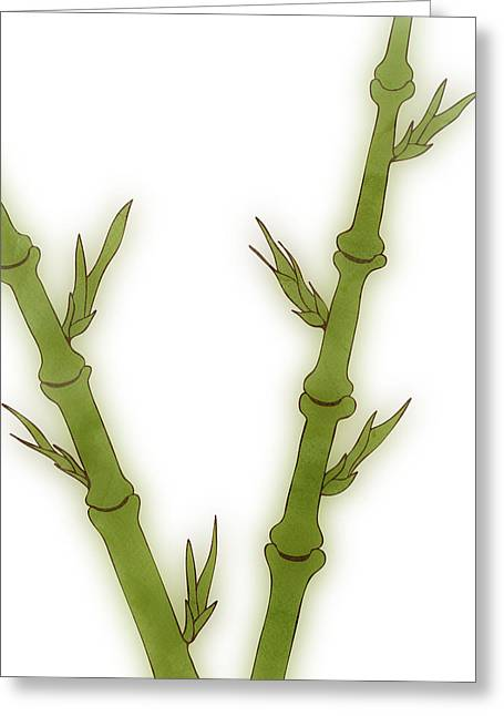 Art Deco Greeting Cards - Bamboo Greeting Card by Frank Tschakert