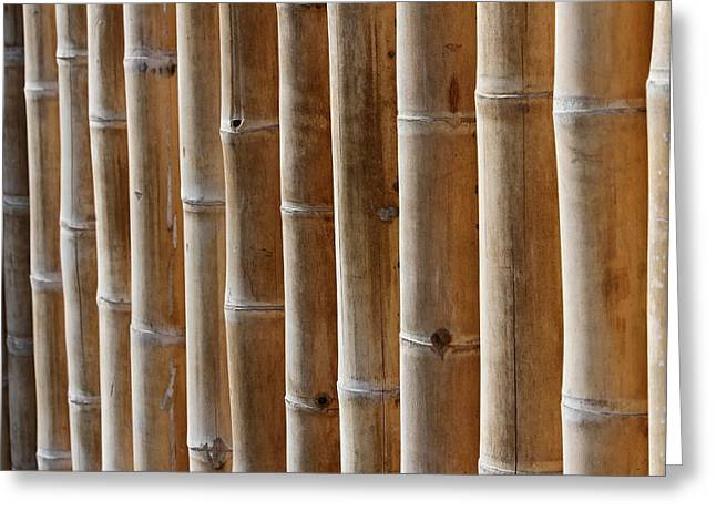 Fitting Room Greeting Cards - Bamboo  Greeting Card by Heike Hultsch