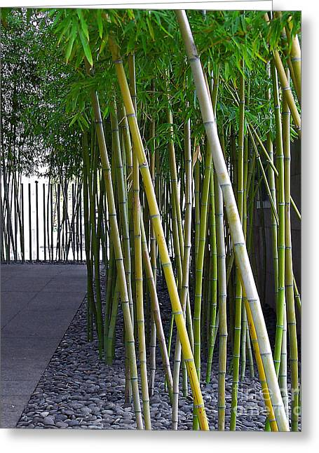 Bamboo Fence Greeting Cards - Bamboo Greeting Card by Merton Allen