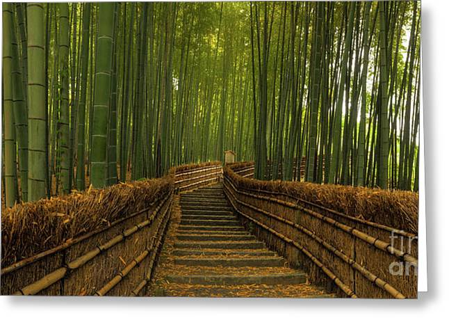 Bamboo Panorama - Kyoto Japan Greeting Card by Wietse Michiels
