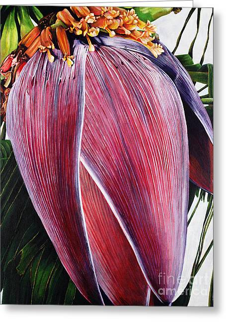 Fruit Tree Art Greeting Cards - Banana Blossom Greeting Card by Sandra Blazel - Printscapes