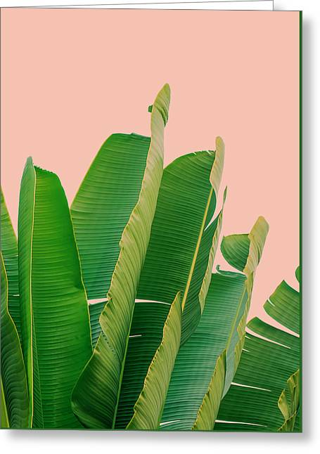 Banana Leaves Greeting Card by Rafael Farias