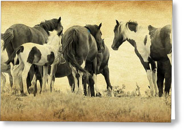 Vale Greeting Cards - Band Of Horses Greeting Card by Athena Mckinzie