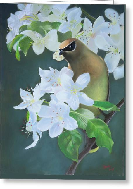 Spring Pastels Greeting Cards - Bandit in the Blossoms Greeting Card by Marcus Moller
