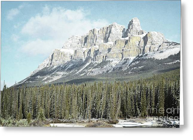 Snow Tree Prints Greeting Cards - Banff Canada Mountain Forest Landscape Greeting Card by Andrea Hazel Ihlefeld
