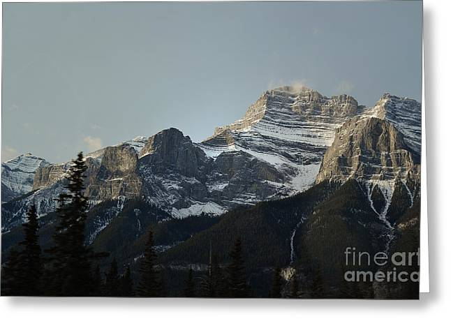 Snow Tree Prints Greeting Cards - Banff Canada Mountainside Landscape Greeting Card by Andrea Hazel Ihlefeld