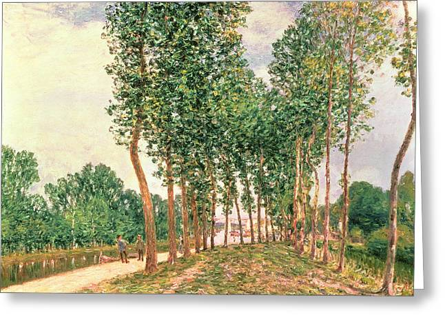 Banks Of The Loing, Near Moret  Greeting Card by Alfred Sisley