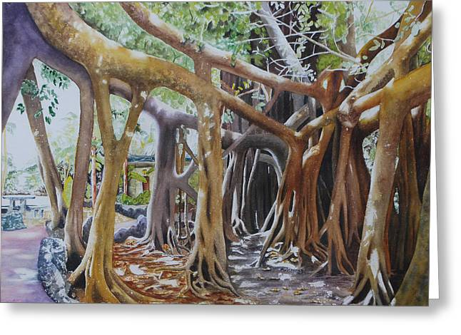 Tree Roots Paintings Greeting Cards - Banyan Path Greeting Card by Terry Arroyo Mulrooney