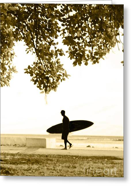 Surf Lifestyle Greeting Cards - Banyan Surfer - Triptych  part 3 of 3 Greeting Card by Sean Davey